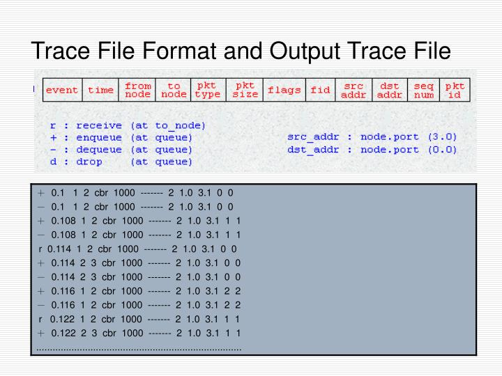 Trace File Format and Output Trace File