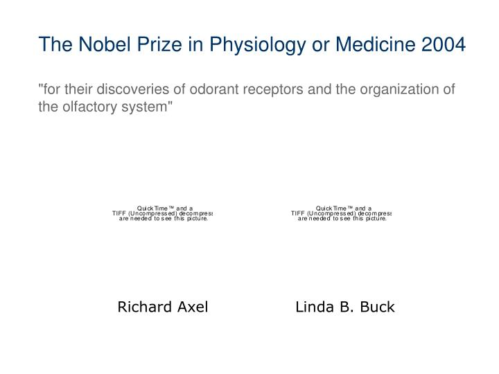 The Nobel Prize in Physiology or Medicine 2004