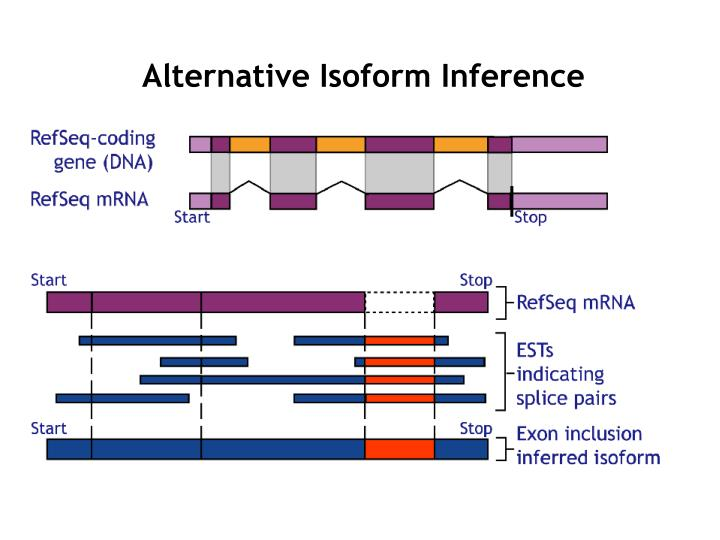 Alternative Isoform Inference