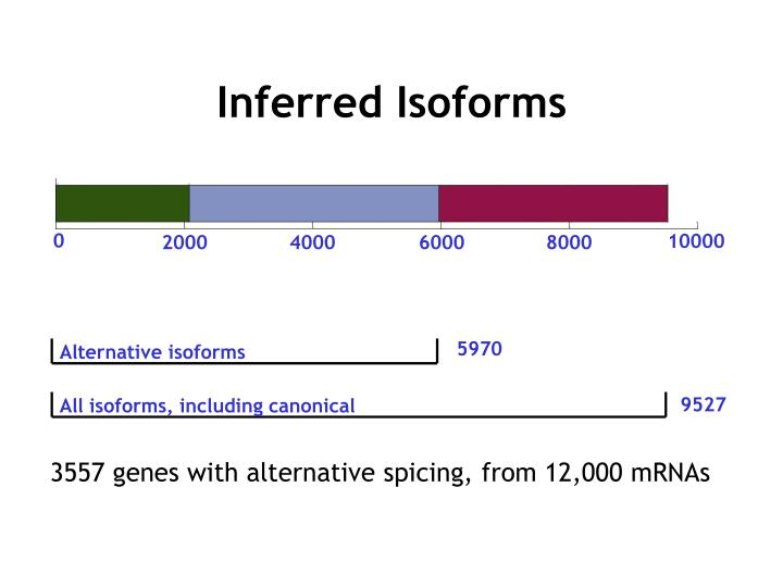 Inferred Isoforms