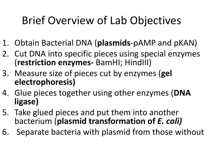 Brief overview of lab objectives