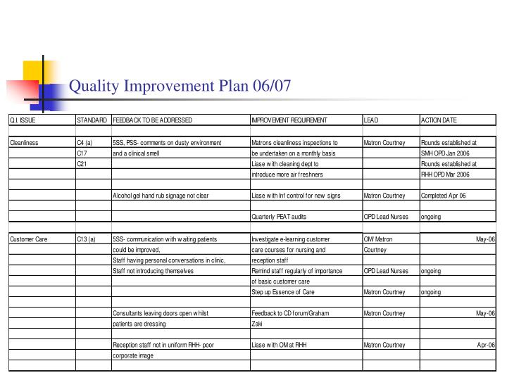 Quality Improvement Plan 06/07