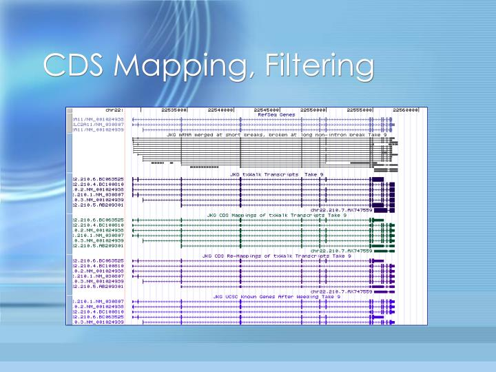 CDS Mapping, Filtering