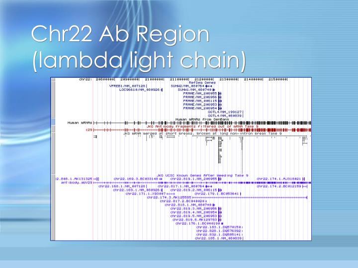 Chr22 Ab Region