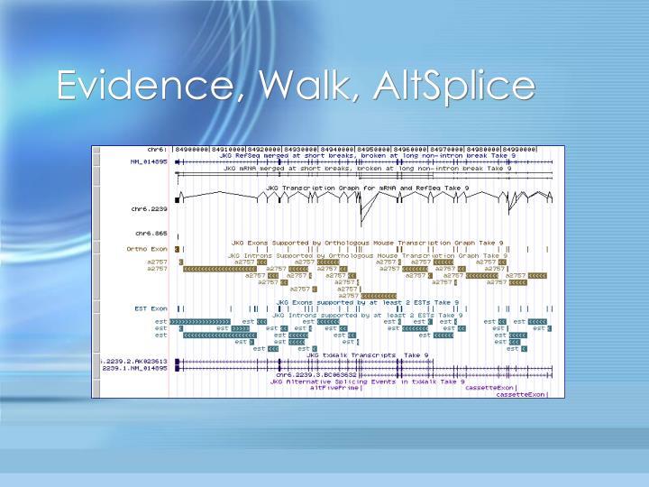 Evidence, Walk, AltSplice