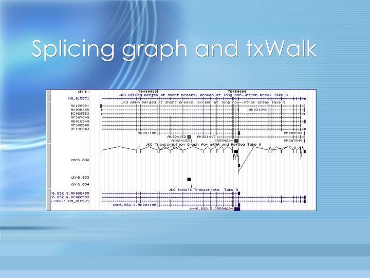 Splicing graph and txWalk