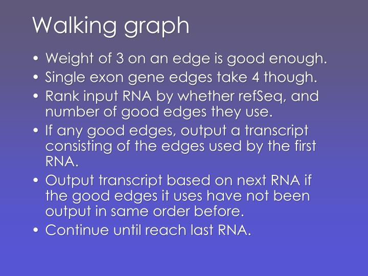 Walking graph
