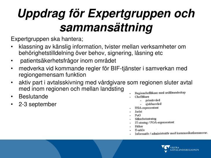 Uppdrag för Expertgruppen och sammansättning