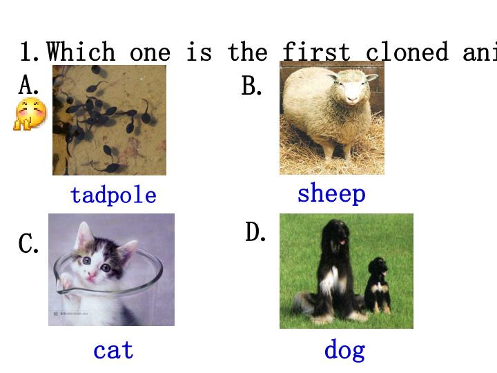 Which one is the first cloned animal?