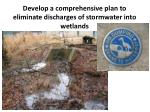 develop a comprehensive plan to eliminate discharges of stormwater into wetlands