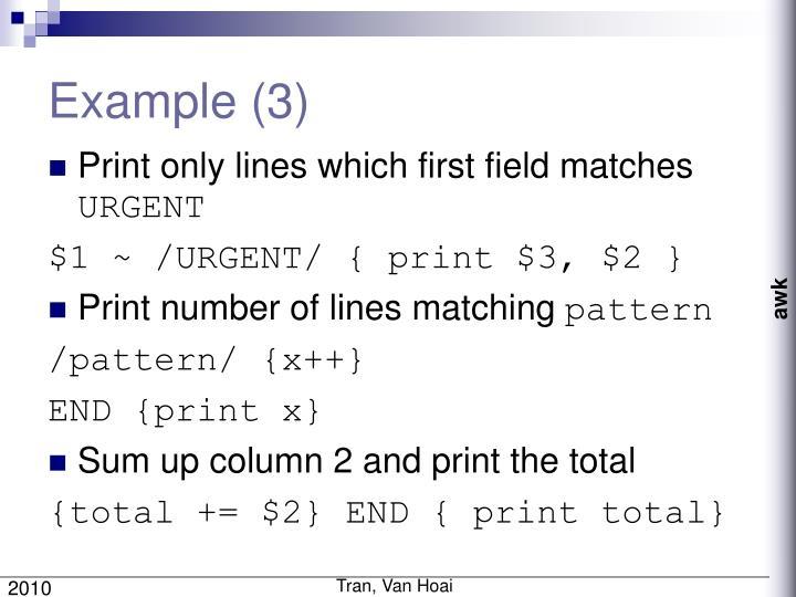 Example (3)