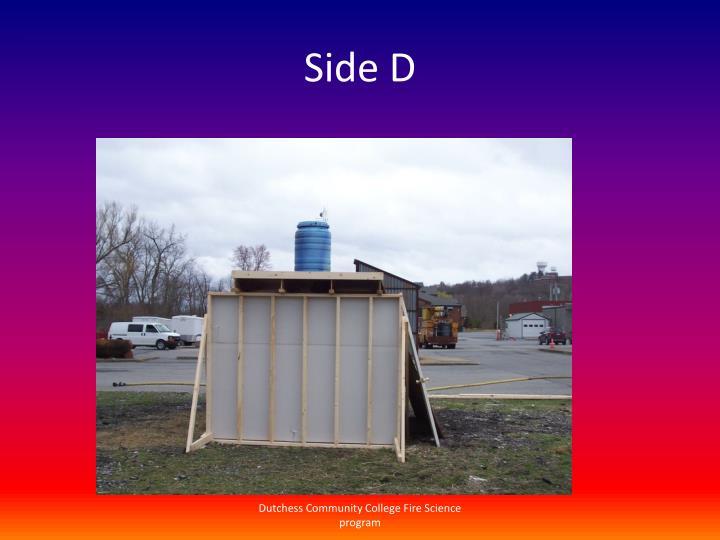 Side D