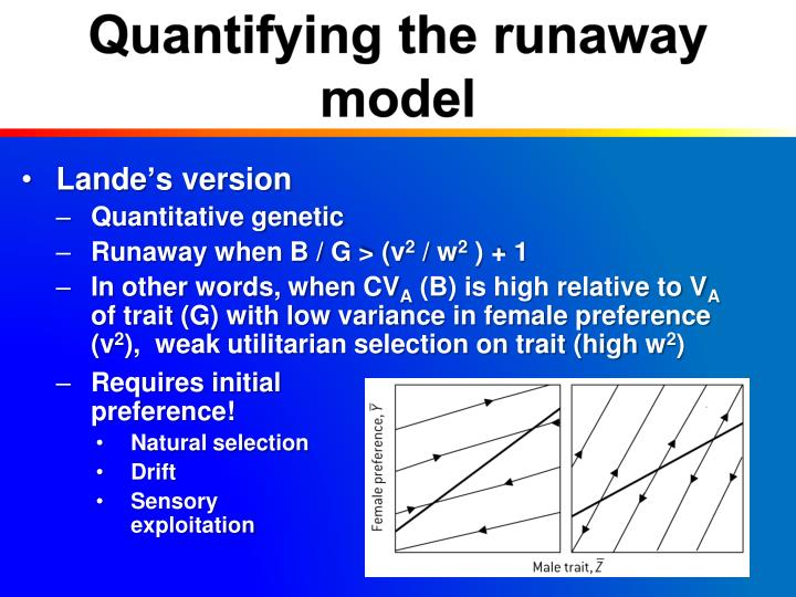 Quantifying the runaway model