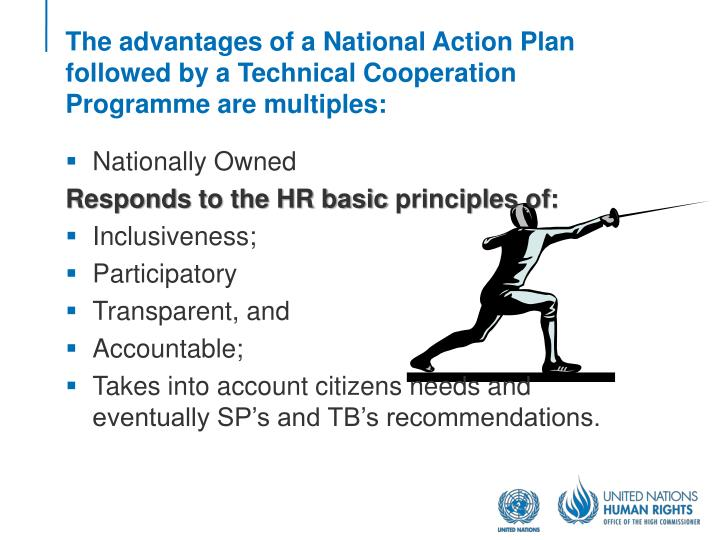 The advantages of a National Action Plan followed by a Technical Cooperation Programme are multiples:
