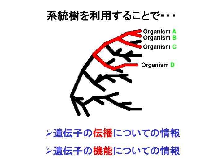 系統樹を利用することで・・・