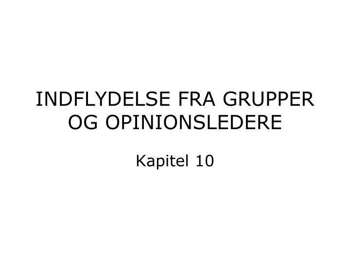 indflydelse fra grupper og opinionsledere n.