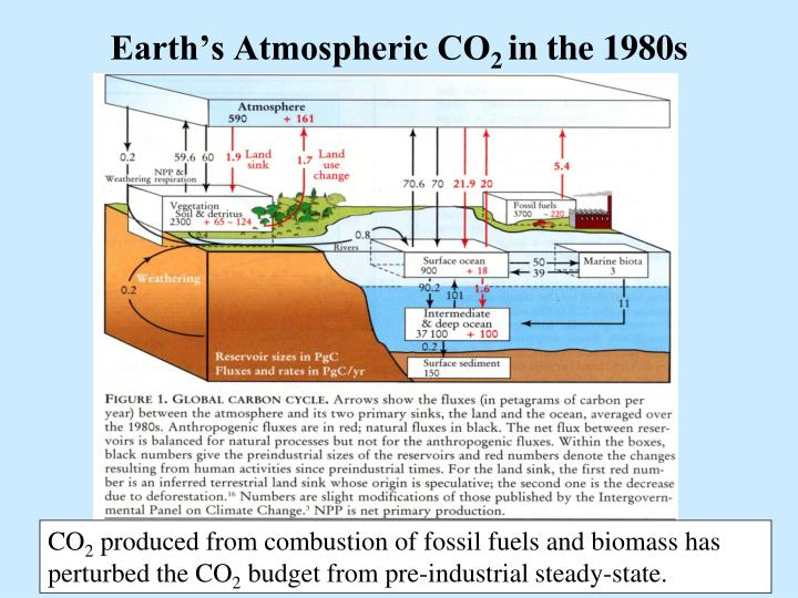 Earth's Atmospheric CO