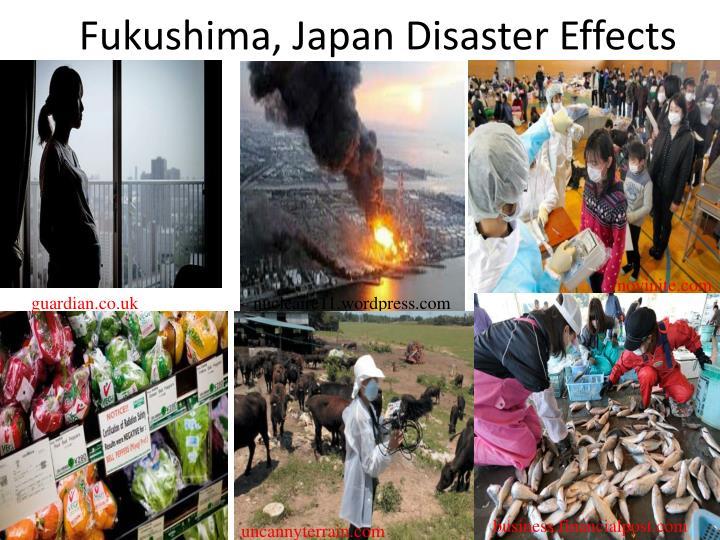 Fukushima, Japan Disaster Effects