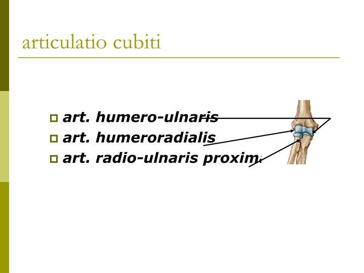 articulatio cubiti