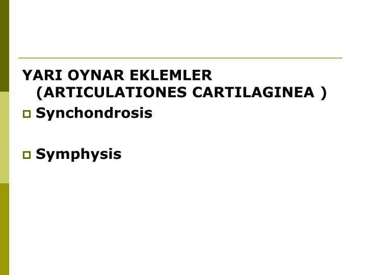 YARI OYNAR EKLEMLER (ARTICULATIONES CARTILAGINEA )