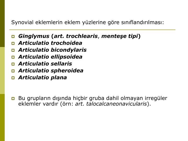 Synovial eklemlerin eklem yüzlerine göre sınıflandırılması: