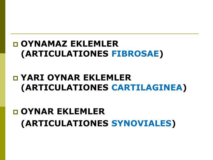 OYNAMAZ EKLEMLER (ARTICULATIONES