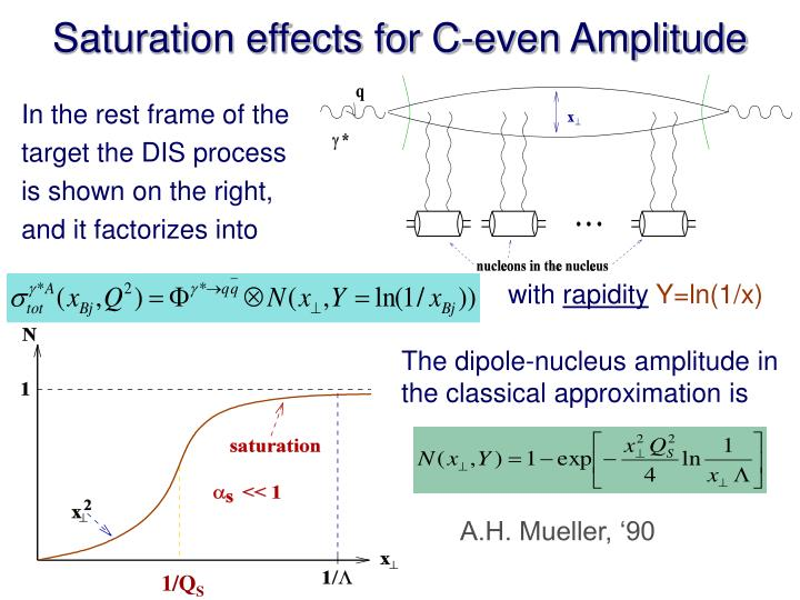 Saturation effects for C-even Amplitude
