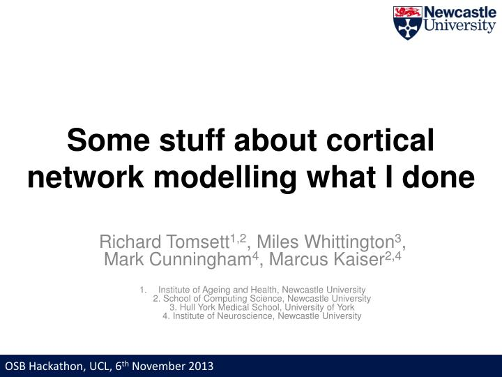 some stuff about cortical network modelling what i done n.