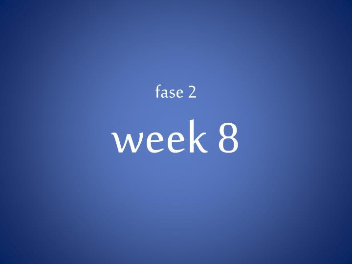 fase 2 week 8
