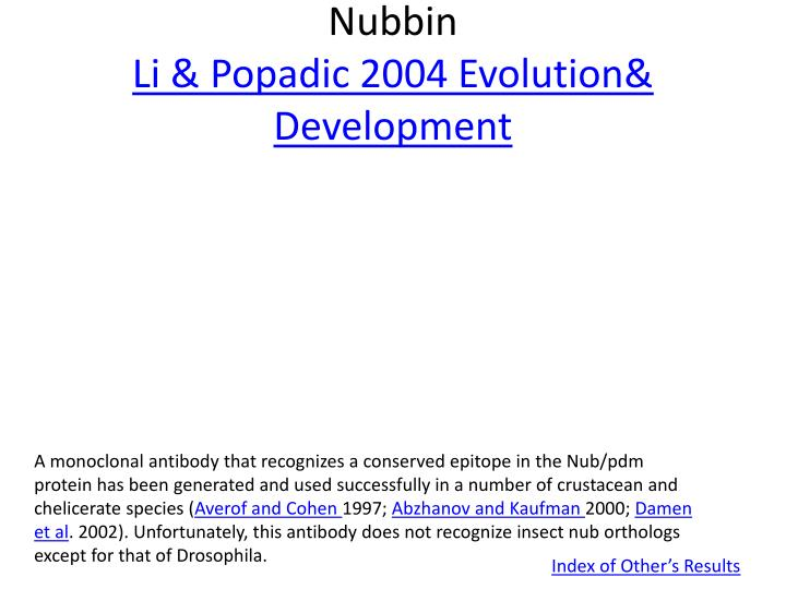 Nubbin