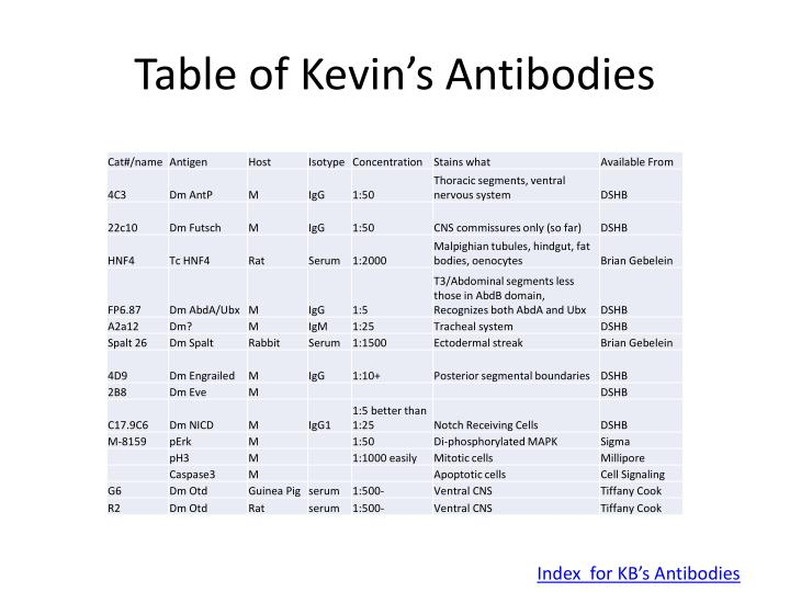 Table of Kevin's Antibodies