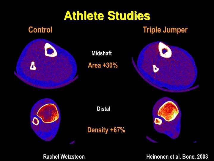 Athlete Studies