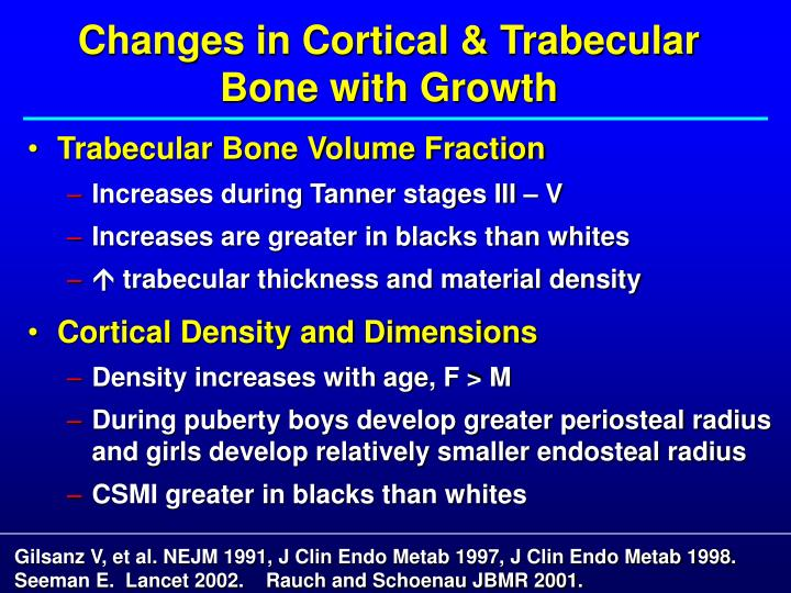 Changes in Cortical & Trabecular Bone with Growth