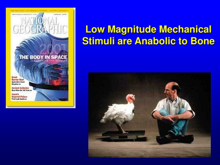 Low Magnitude Mechanical Stimuli are Anabolic to Bone