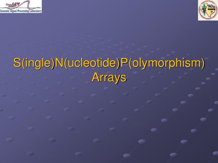 S(ingle)N(ucleotide)P(olymorphism) Arrays