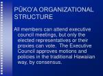 p ko a organizational structure1