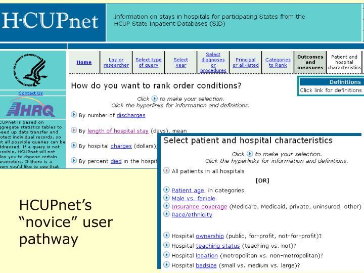 "HCUPnet's ""novice"" user pathway"