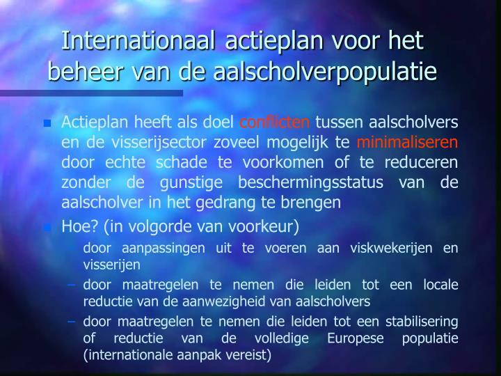 Internationaal