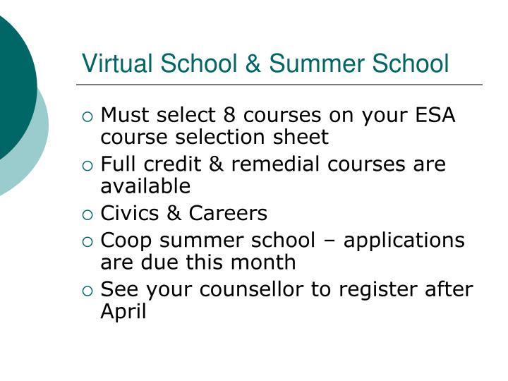 Virtual School & Summer School