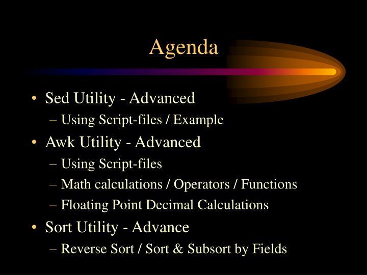 agenda n.