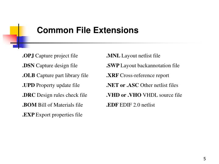 Common File Extensions