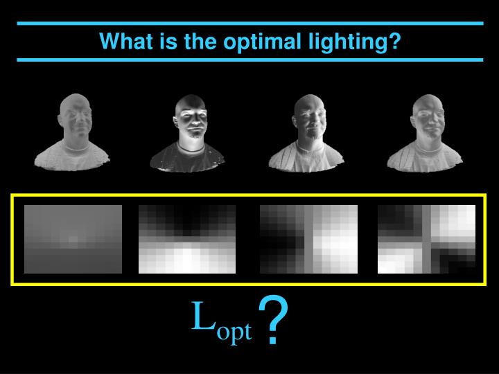 What is the optimal lighting?