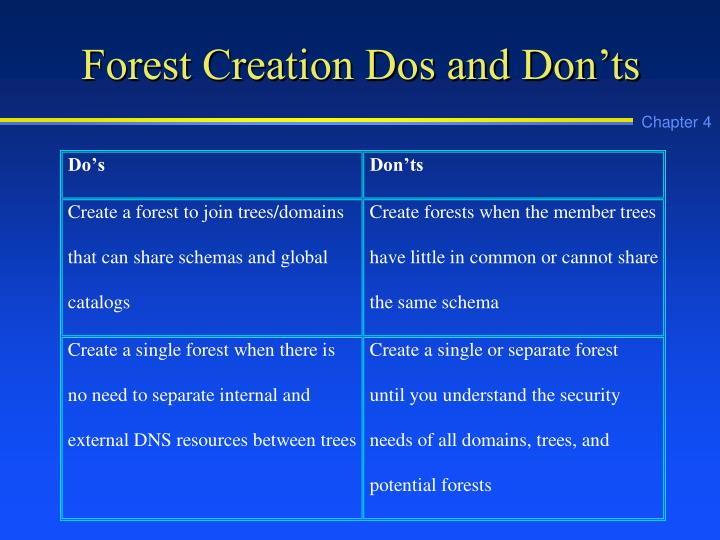 Forest Creation Dos and Don'ts