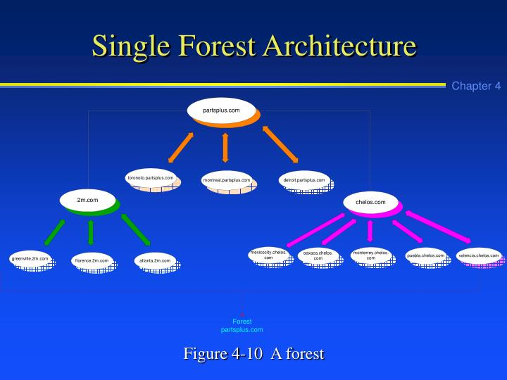 Single Forest Architecture