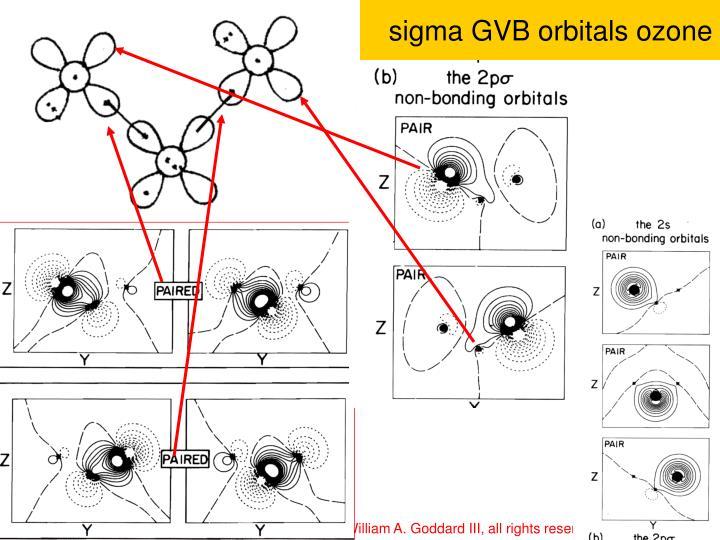sigma GVB orbitals ozone