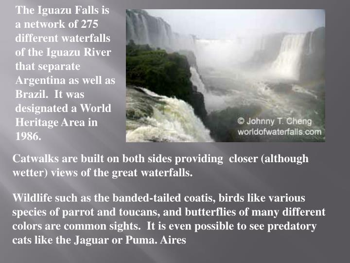 The Iguazu Falls is a network of 275 different waterfalls of the Iguazu River that separate Argentina as well as Brazil.  It was designated a World Heritage Area in 1986.
