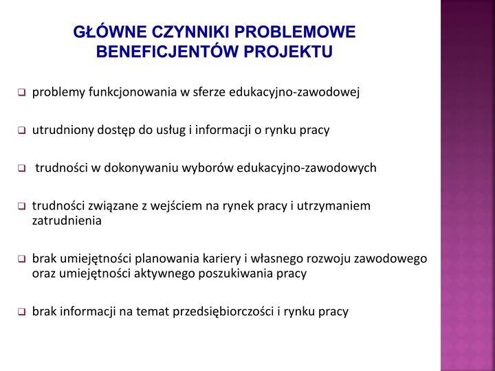 Główne czynniki problemowe beneficjentów projektu