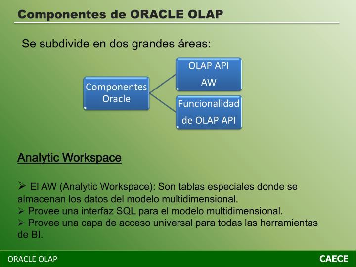 Componentes de ORACLE OLAP