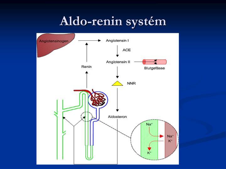 Aldo-renin systém