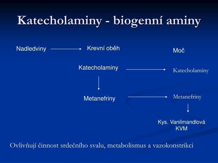Katecholaminy - biogenní aminy